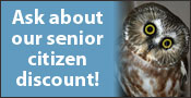 Horizon Wings' Senior Citizen Discount